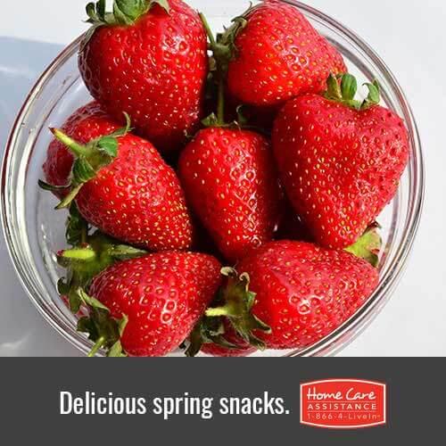 Healthy Spring Foods for Elderly