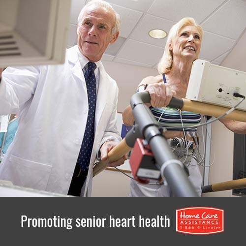 Ways to Promote Cardiovascular Health Among Seniors in Philadelphia, PA