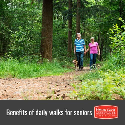 How Seniors Benefit from Taking Daily Walks in Philadelphia, PA