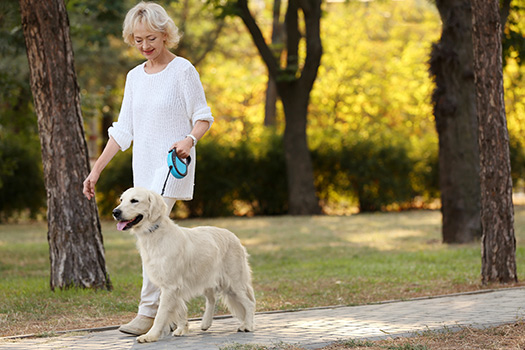 Walking Trails For Older Adults in Philadelphia, PA