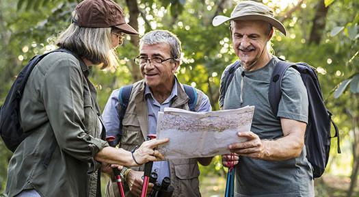 Fun Activities For The Elderly
